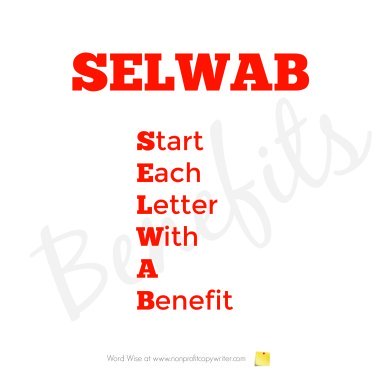 The SELWAB Formula with Word Wise at Nonprofit Copywriter