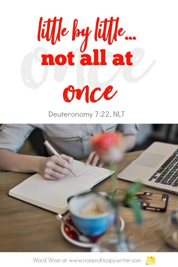 The Writing Skill: acquire one at a time. A #devotional for writers based on Deut 7:22 with Word Wise at Nonprofit Copywriter #FreelanceWriting #NewbieCopywriting #ChristianWriting