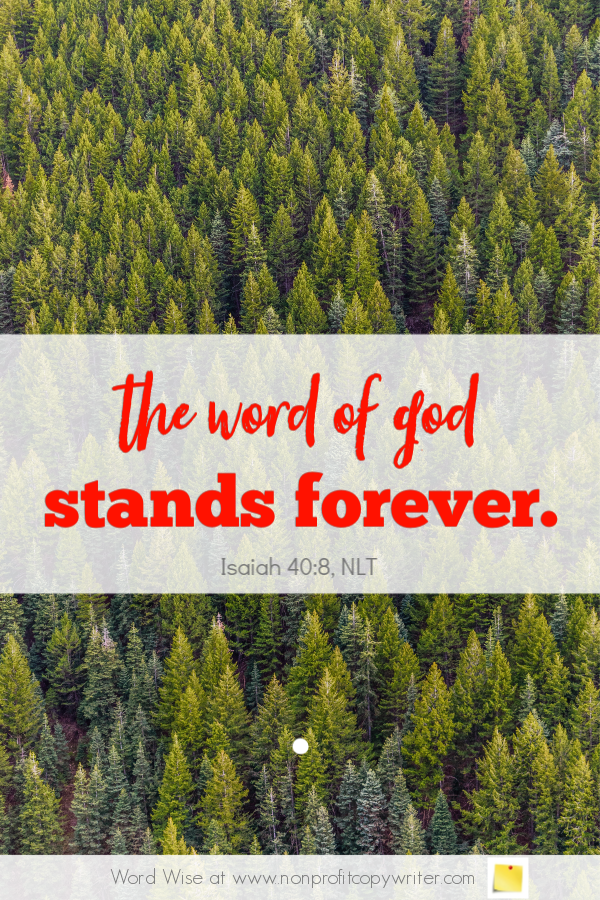 The Evergreen Post: a #devotional for writers based on Isaiah 30:8 #blogging #ChristianWriting