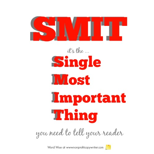 SMIT: the Single Most Important Thing you need to tell your reader with Word Wise at Nonprofit Copywriter